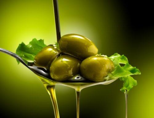 Die Geschichte des Olivenöls – sagenhaft und einzigartig